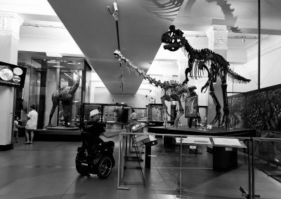 Man riding an Omeo in a museum. He is looking at a dinosaur skeleton